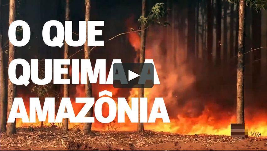 O Que Queima a Amazônia